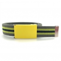 Grey belt, yellow buckle with black and yellow stripes